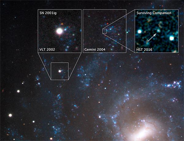 Supernova SN 2001ig.