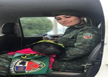 PM REGISTRA AUMENTO NO RESGATE DE ANIMAIS COM RISCO DE EXTINÇÃO