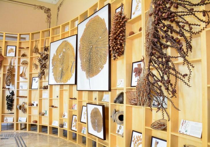Prefeito reabre Museu da Cidade para visitas agendadas e propõe novo nome em homenagem a Óscar Ramos