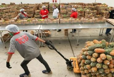 Governo do Amazonas entrega 180 toneladas de alimentos para instituições que atuam com pessoas em vulnerabilidade social