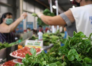 Feiras Regionais da ADS nos shoppings Manaus Plaza e Sumaúma retornam a partir de terça-feira (16)