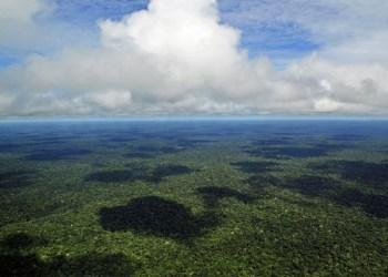 Governo: Desmatamento caiu 34% na Amazônia em fevereiro
