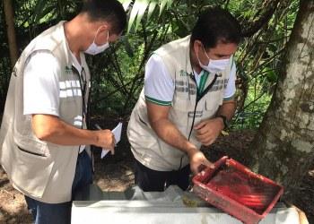 FVS-AM realiza visitas aos municípios para suporte nas ações de controle da dengue