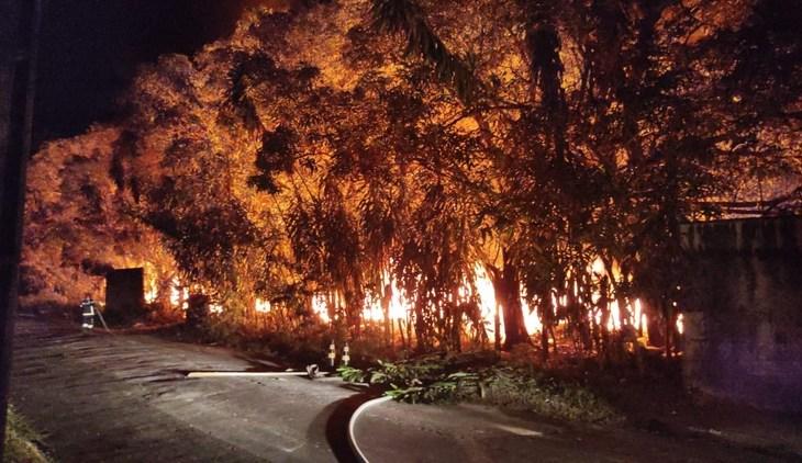 Labaredas de fogo consomem área de mata no Santa Etelvina