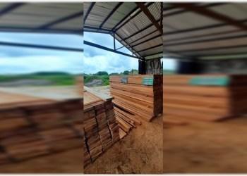 PMAM apreende madeira ilegal em ação em Manacapuru