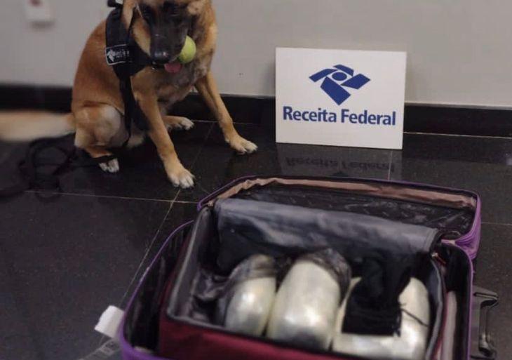 Receita Federal apreende drogas no Aeroporto e uma pessoa é presa