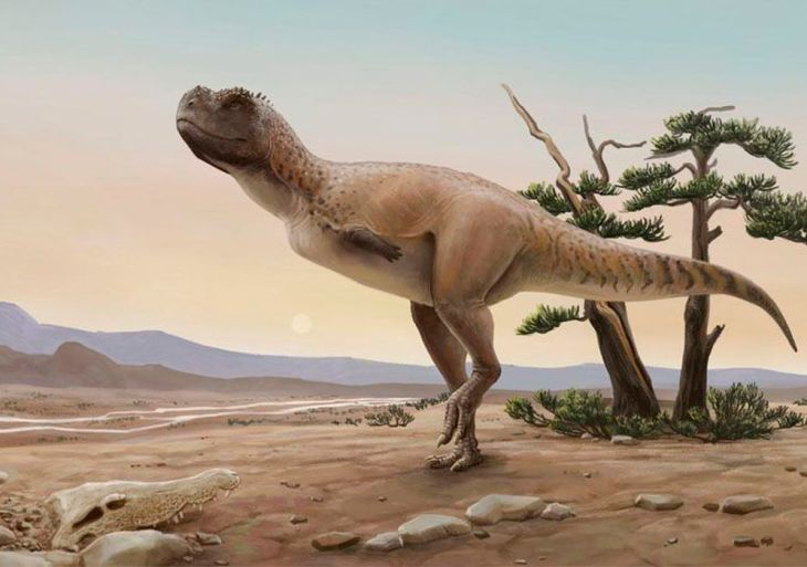 Nova espécie de dinossauro carnívoro é descoberta em São Paulo
