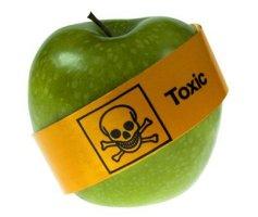 Alimentos Orgânicos X Alimentos Convencionais