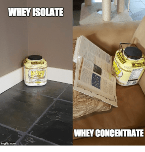 whey isolate whey concentrate 28569244