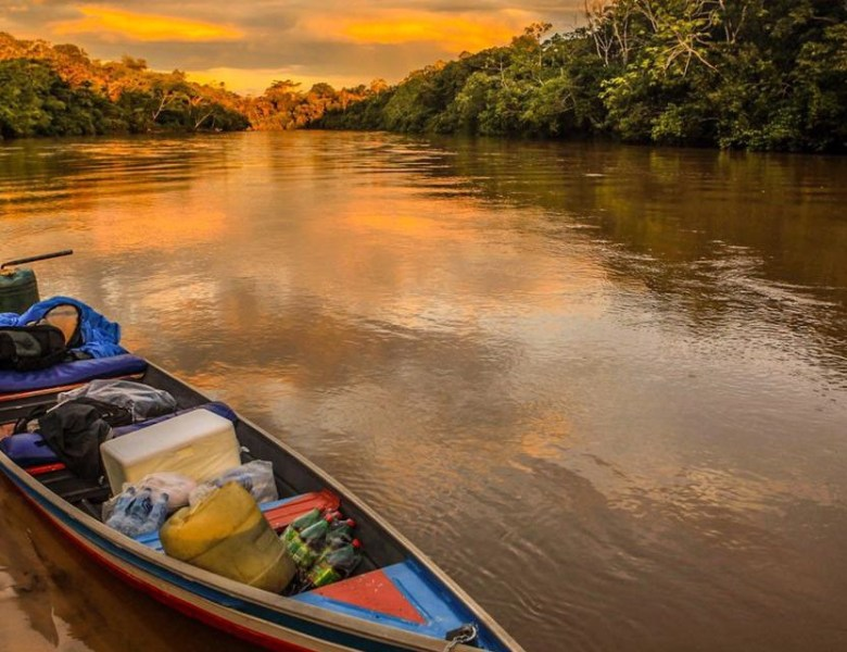 Transformar a Amazônia em fumaça é um choque para a Nação Brasileira