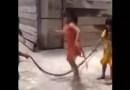 """Vídeo. Crianças são filmadas brincando de """"pular corda"""" com cobra"""