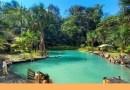 Lagoa Azul encanta e atrai visitantes para Presidente Figueiredo