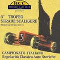 Trofeo Strade Scaligere Memorial Bruno Zorzi. Collegamento al sito www.hccverona.it