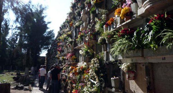 Regresan 75 cuerpos a sus gavetas originales en Santa Paula