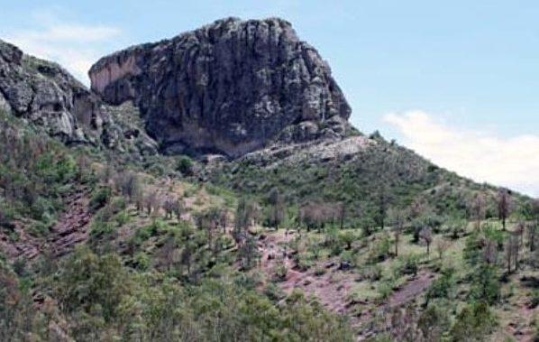 Zona protegida de Guanajuato debe de apresurarse