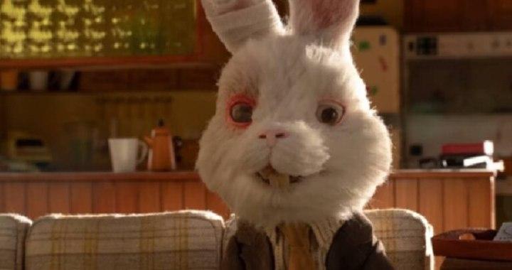 Conejos, personas