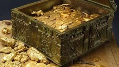 Tesouro de R$ 5 milhões escondido nos EUA por colecionador é achado após 10 anos e 5 mortes 4