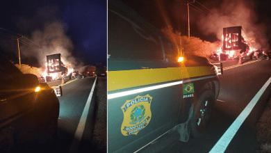 Carga de algodão é totalmente destruída após veículos pegarem fogo na BR 135 6