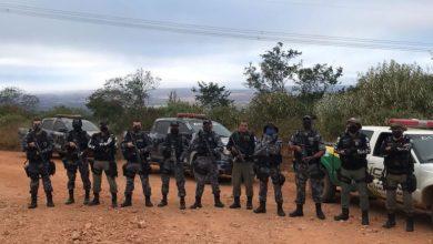 Polícia Militar prende suspeito de cultivar droga no quintal de casa no PI 1