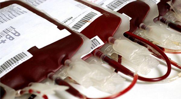 Resultado de imagem para Em Pernambuco, doadores de sangue