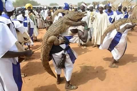 igreja usa crocodilos