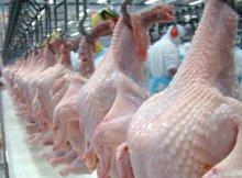 As três marcas de frango congelado fazem parte do conjunto que foi descoberto com problemas pelas autoridades brasileiras