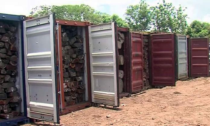 a Polícia da República de Moçambique, culminou com a apreensão de 26 contentores de madeira, pertencente a um operador de nacionalidade chinesa