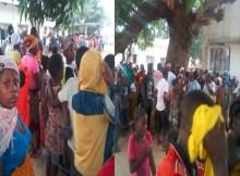 As Forças de Defesa e Segurança que operam em Palma capturaram na manhã de ontem, na aldeia Malamba, 8 homens que alegadamente pertenciam ao grupo de insurgentes em Cabo Delgado