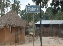 Onze pessoas, todas civis, foram mortas na noite da última quarta feira (26 de Junho) na comunidade de Quissungule, na zona de Nhyka do Rovuma, no distrito nortenho de Palma em Cabo Delgado