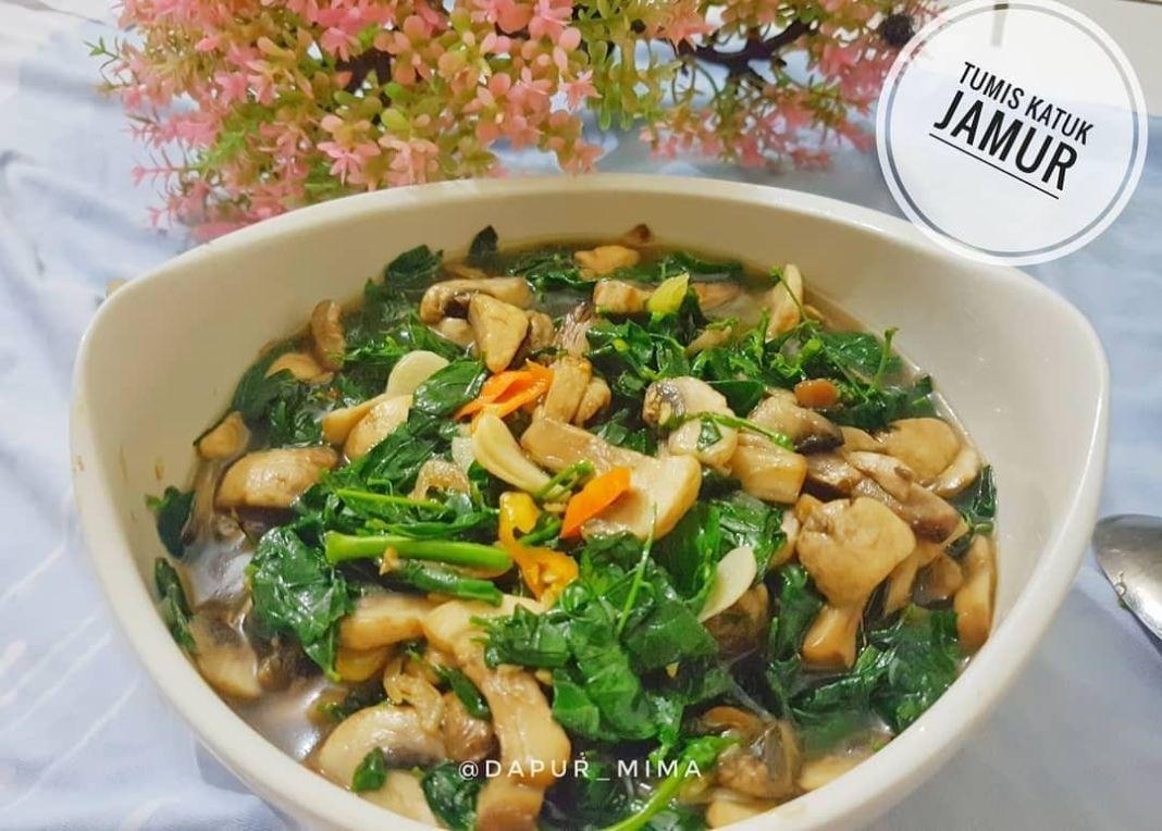 Info kuliner, TUMIS KATUK JAMUR . .  . Tumis katuk campur jamur cocok banget untuk para busui yg bosan dg sayu…