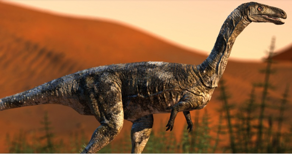 Fóssil de dinossauro inédito é descoberto no interior do Paraná; veja o vídeo do bicho
