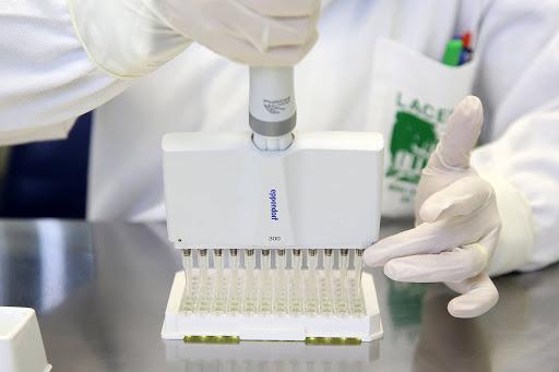 145 infectados, 4 mortes e 310 casos em investigação; os números da Covid-19 em Santo Antônio da Platina