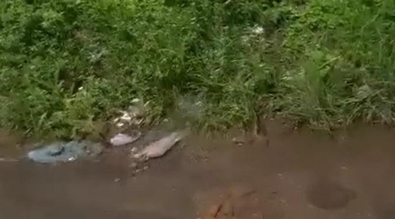Vídeo: Vazamento de água do poço de empresa no Alto do Jaguarema