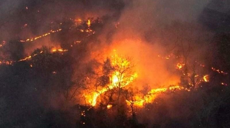 Segundo IMESC, o Maranhão apresenta uma redução de 9,2% nos focos de queimada em 2020