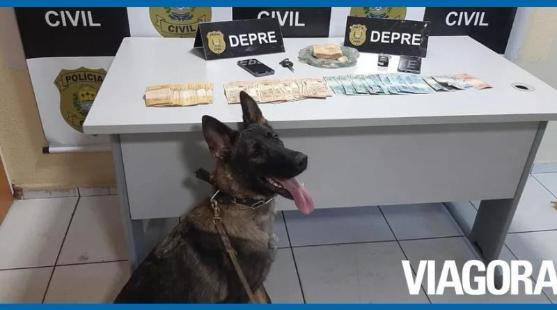 Polícia Civil prende duas pessoas por tráfico de drogas em Teresina