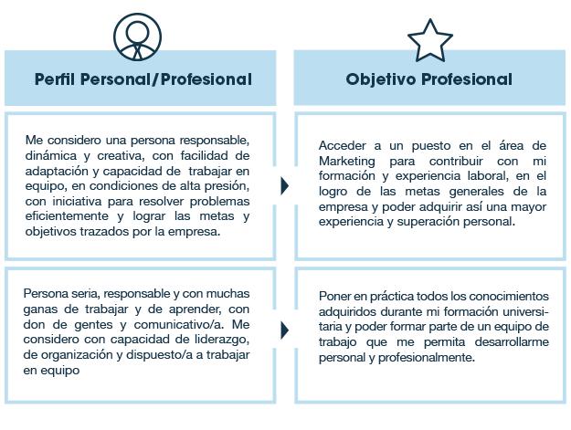 Modelo De Curriculum Vitae Para Trabajo Profesional Sample Resume