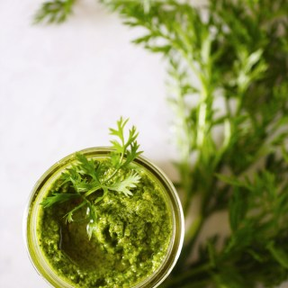 Carrot-Top Pesto