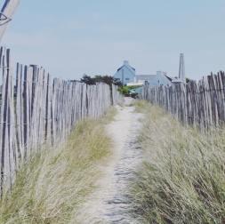 Chemin menant à la plage du Goudoul en Bretagne