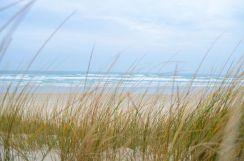 L'art du camouflage sur les dunes de Tronoën dans le Finistère
