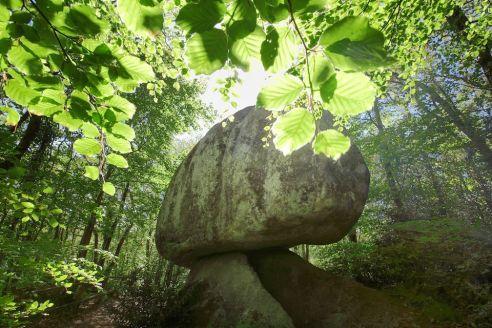 Le célèbre rocher champignon de la forêt de Huelgoat !