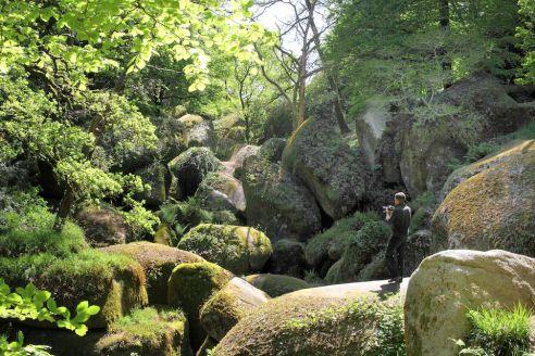 Le chaos granitique d'une forêt bretonne de légende !