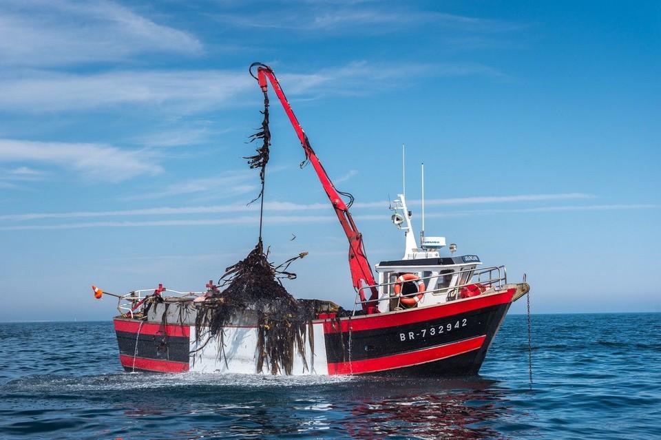 Explorez les beautés de l'archipel de Molène, la pêche des algues