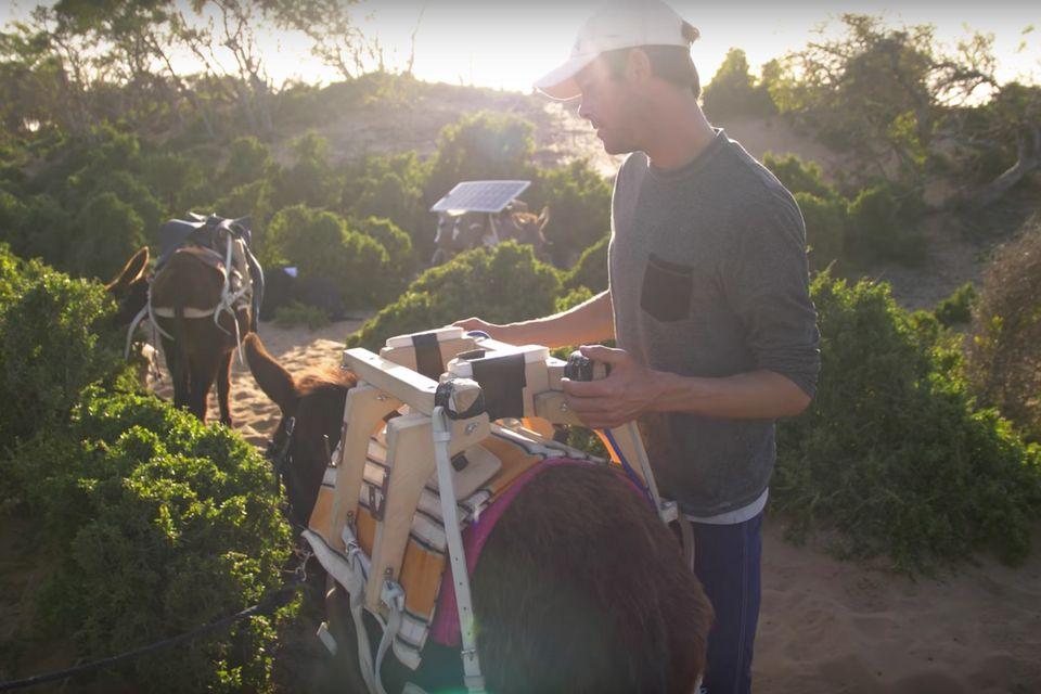 Lost in the Swell au Maroc, le surf-trip qui fait tourner en bourrique