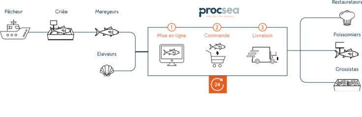 Schéma décrivant le fonctionnement de la criée en ligne Procsea