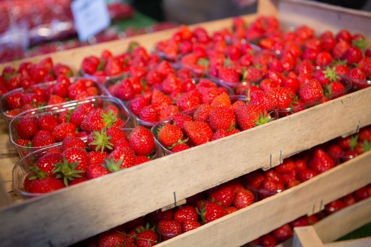 Des fraises logent dans une palette