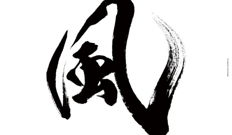 【書道家:武田双雲さんインタビュー】 ビジョンを具現化した「書」が伝えること