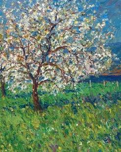 Apple Tree in Blossom (2/2)