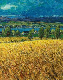 Corn Field In Bright Sunlight (2/2)