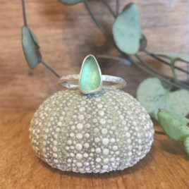 Small, dainty light green seaglass ring, sat on an urchin