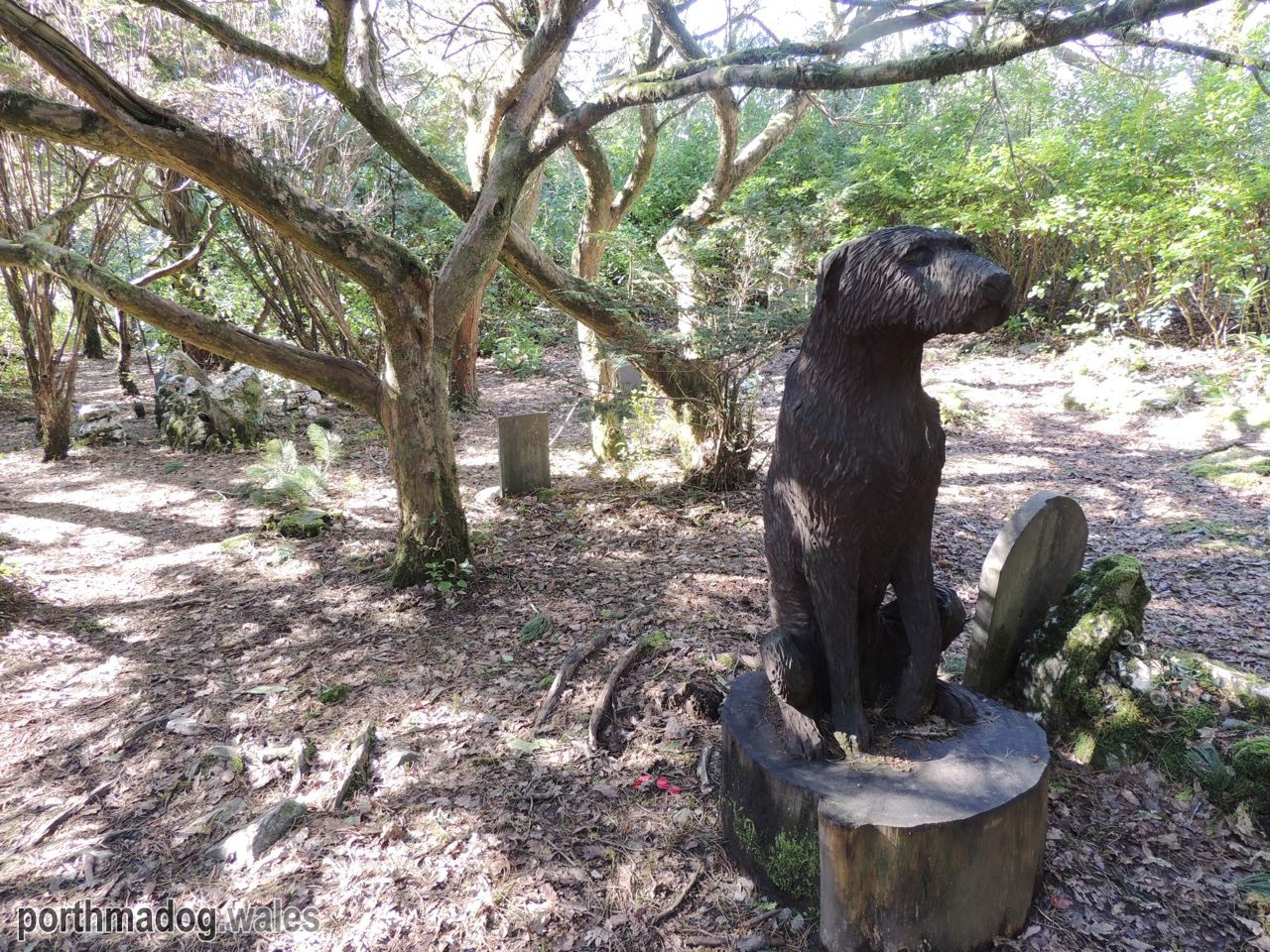 The Dog's Graveyard, Portmeirion